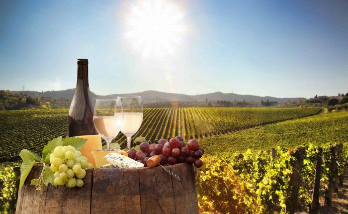 serbia wine lets balkan